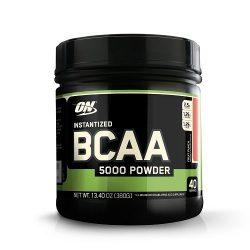 ON (Optimum Nutrition) Instantized BCAA 5000